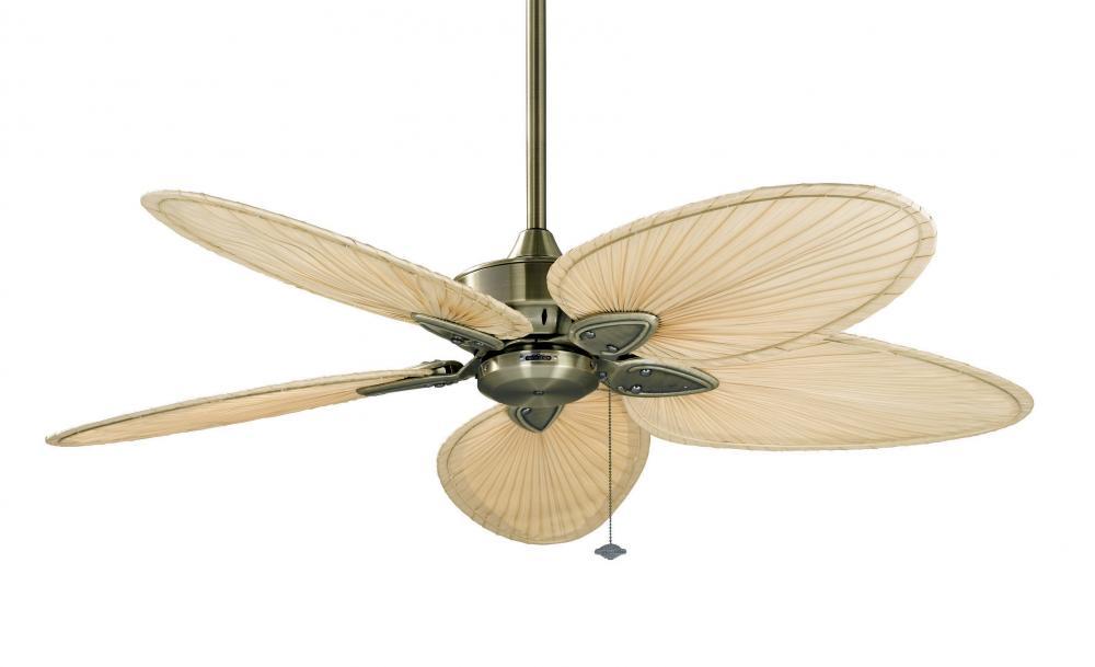 Windpointe 22 inch ab narrow oval palm blades n